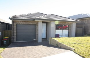 Picture of 48 Jennings Crescent, Spring Farm NSW 2570