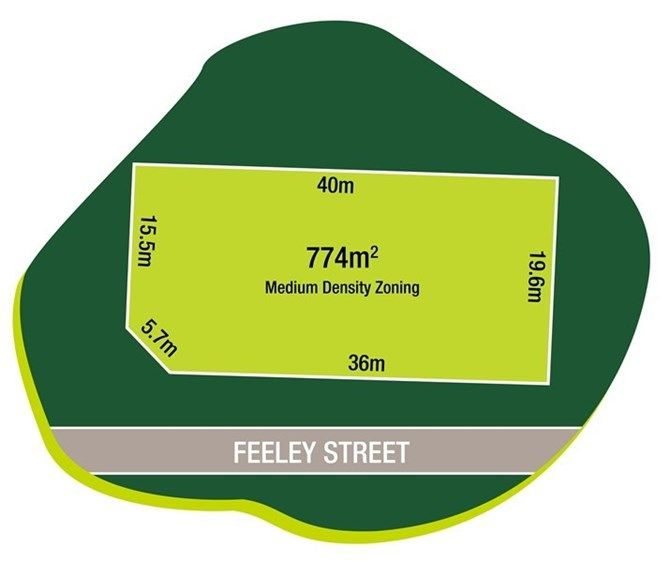 1 Feeley Street , Buderim QLD 4556, Image 2