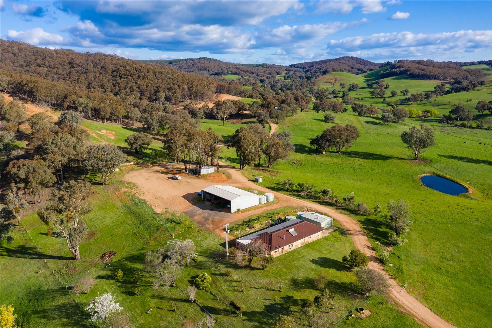 468 Vokins Creek Road, Holbrook NSW 2644, Image 0