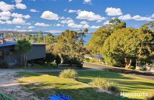Picture of 24 Halcyon Grove, St Helens TAS 7216
