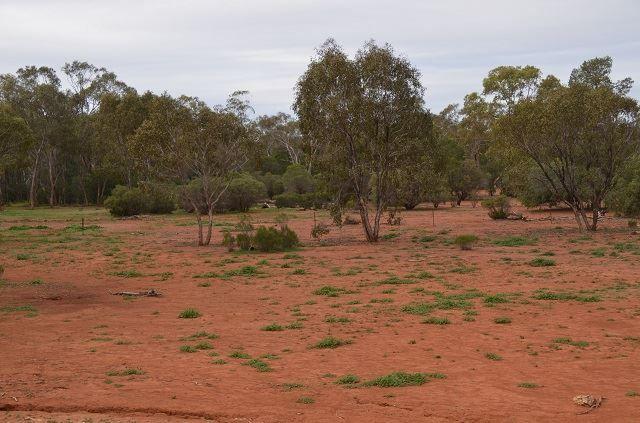 * Budgery, Cobar NSW 2835, Image 2