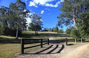 390B East Bank Road, Coramba NSW 2450