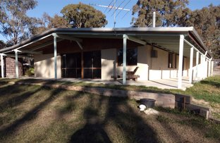Picture of 1697 Texas Road, Stanthorpe QLD 4380