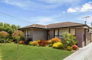 Picture of 3 Harry Street, Cranbourne VIC 3977