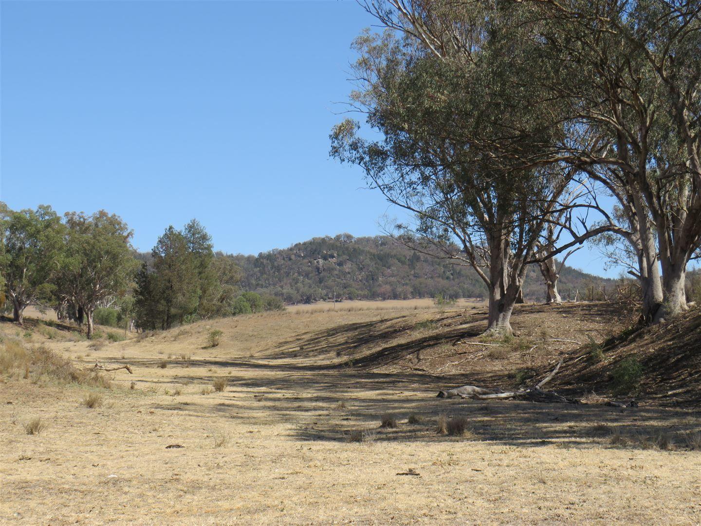Kootingal NSW 2352, Image 0