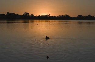 20/5 waterway, Churchlands WA 6018