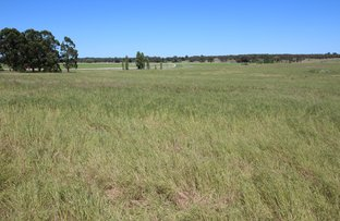 Picture of 0 Blackwell Road, Naracoorte SA 5271
