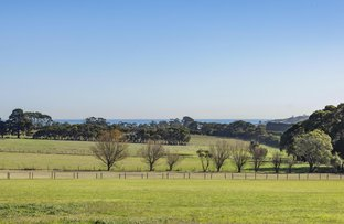 Picture of 195 Wallaces Road, Dromana VIC 3936