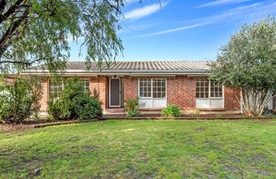 Picture of 8 Hammond Avenue, Morphett Vale SA 5162