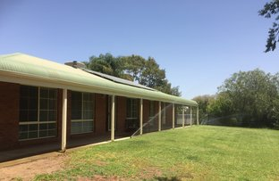 Picture of 30  Ashcroft Lane, Hay NSW 2711