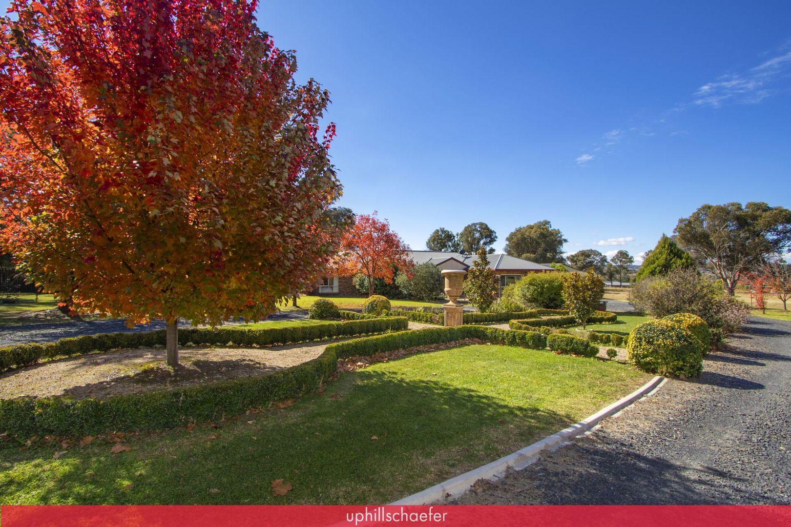 """Killarney Park"" 54 Gungurru Road, Armidale NSW 2350, Image 0"