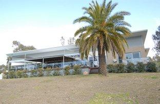 Picture of 156 RIVERVIEW DRIVE, Deniliquin NSW 2710