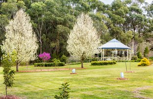Picture of 427 Arthurs Seat Road, Red Hill VIC 3937