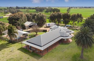 Picture of 614 Nullubooma Road, Wakool NSW 2710