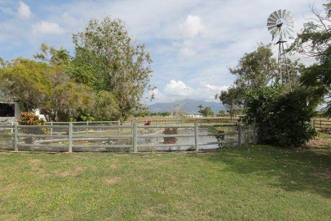 Picture of 39 Plantation Avenue, HORSESHOE LAGOON QLD 4809