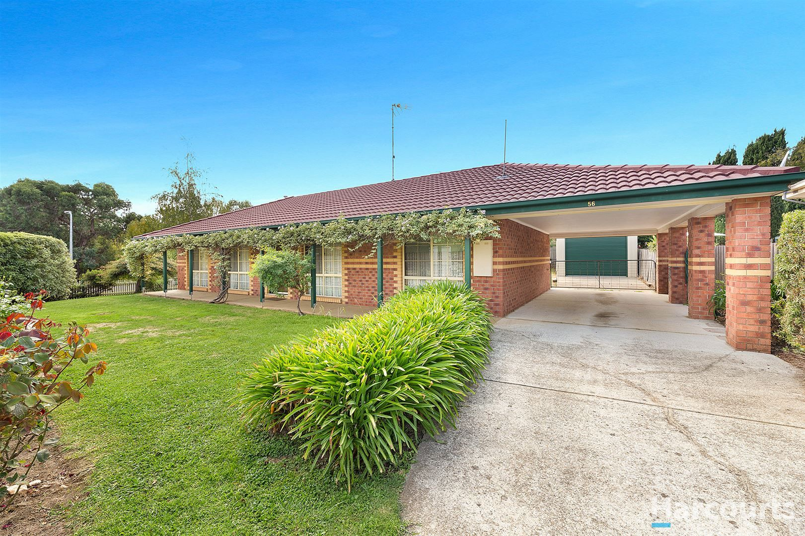 56 Hopetoun Road, Drouin VIC 3818, Image 1