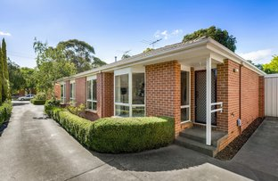 Picture of 3/77 Rooks Road, Mitcham VIC 3132