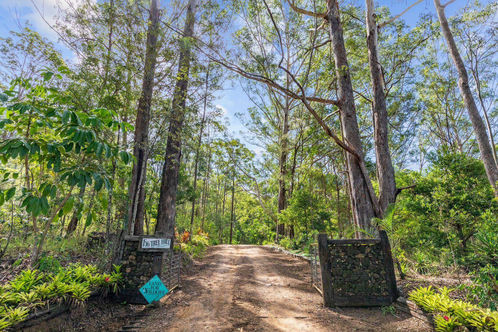 140 Gerrard Road, Eudlo QLD 4554, Image 1