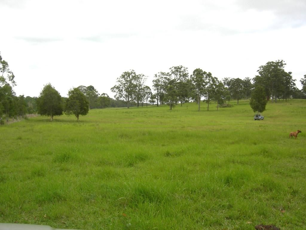 Burrell Creek NSW 2429, Image 1