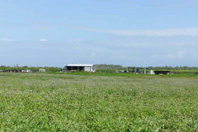 Picture of 338 Legges Road, BRAEMEADOWS QLD 4850