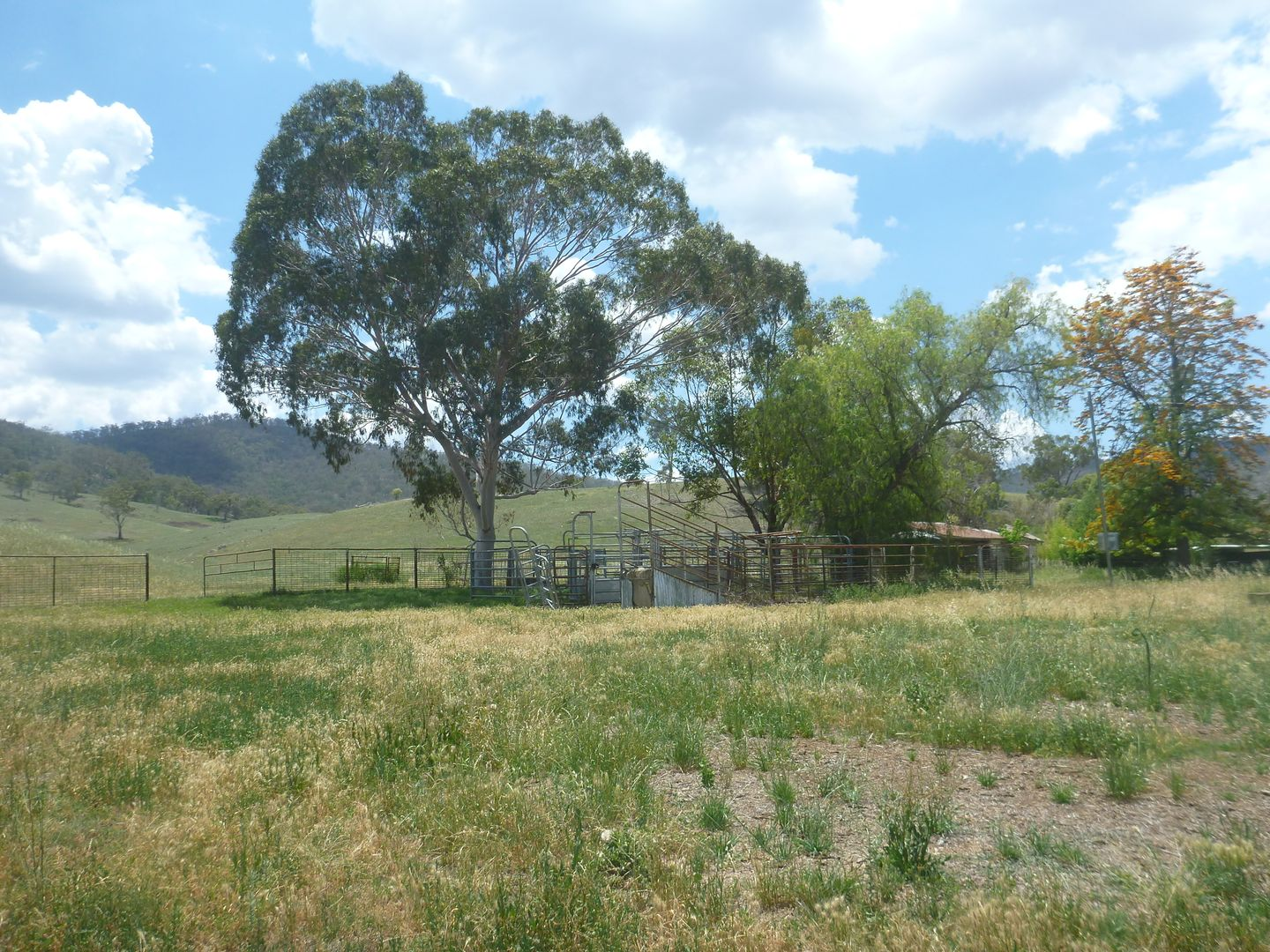 1729 Nundle Road, Dungowan NSW 2340, Image 2