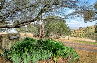 Picture of 132 Cut Hill Road, Kangarilla SA 5157