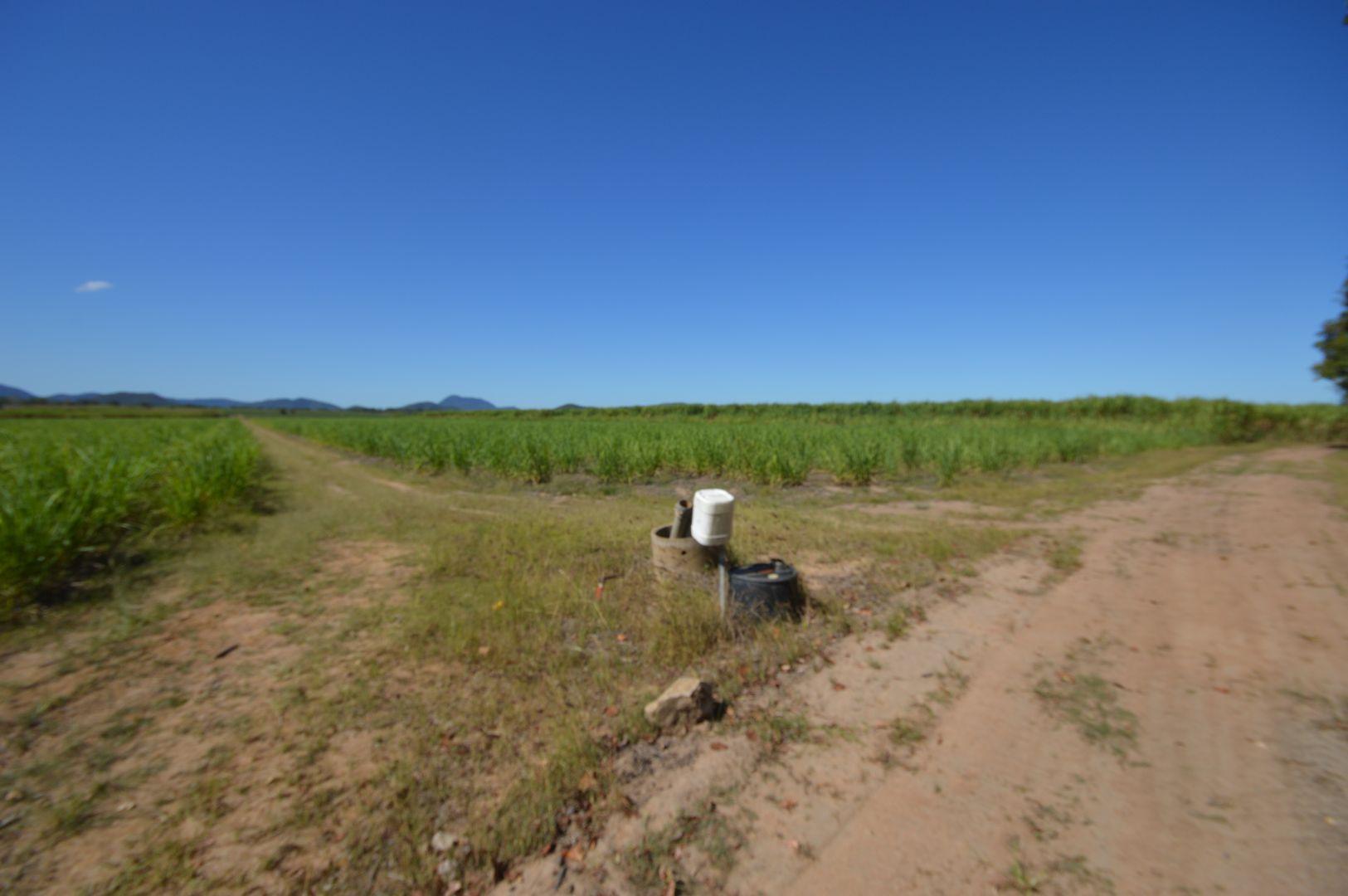 205 Dunwold-Cattle Creek Road, Mirani QLD 4754, Image 2
