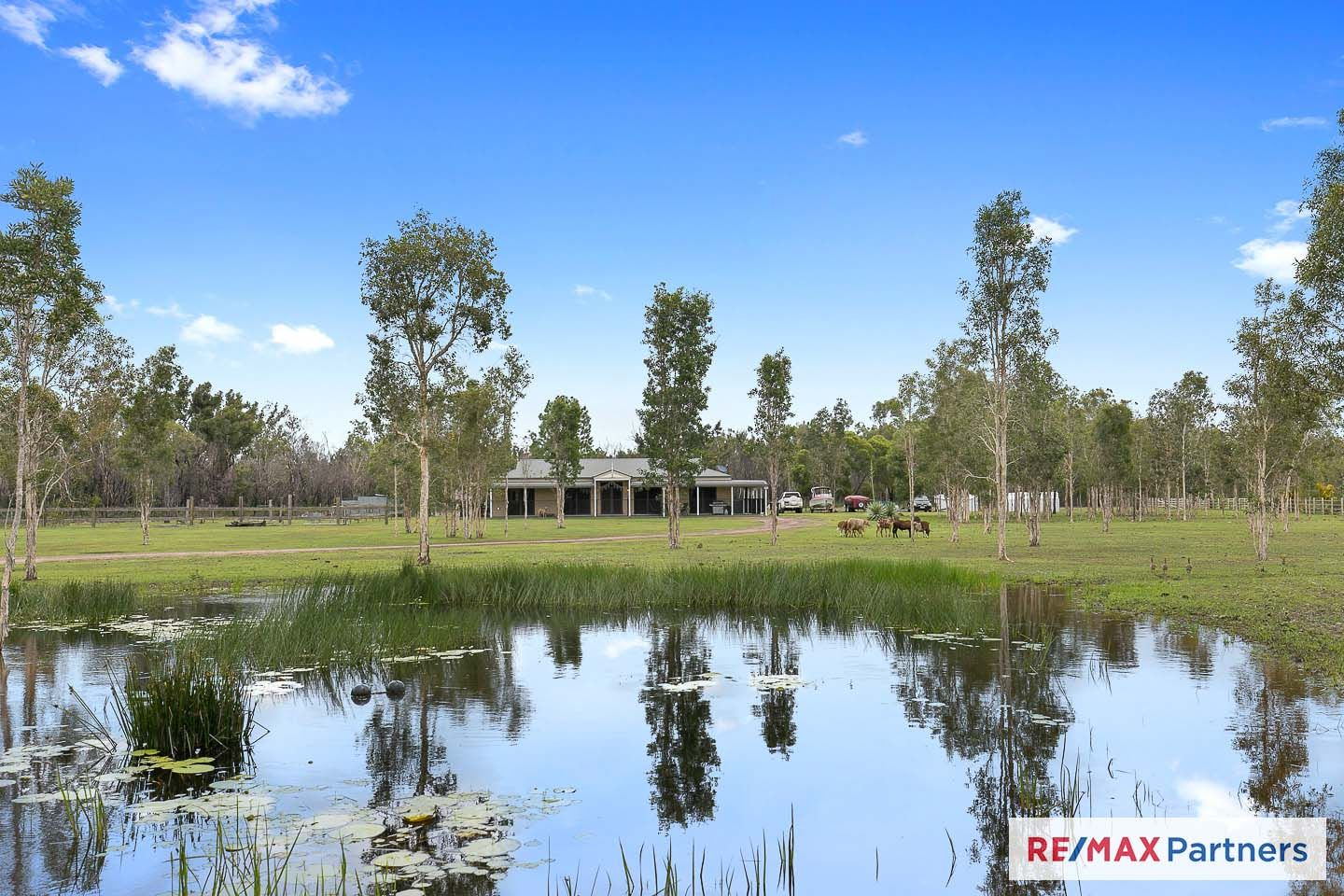 Lot 7 Starview Road, Dundathu QLD 4650, Image 0