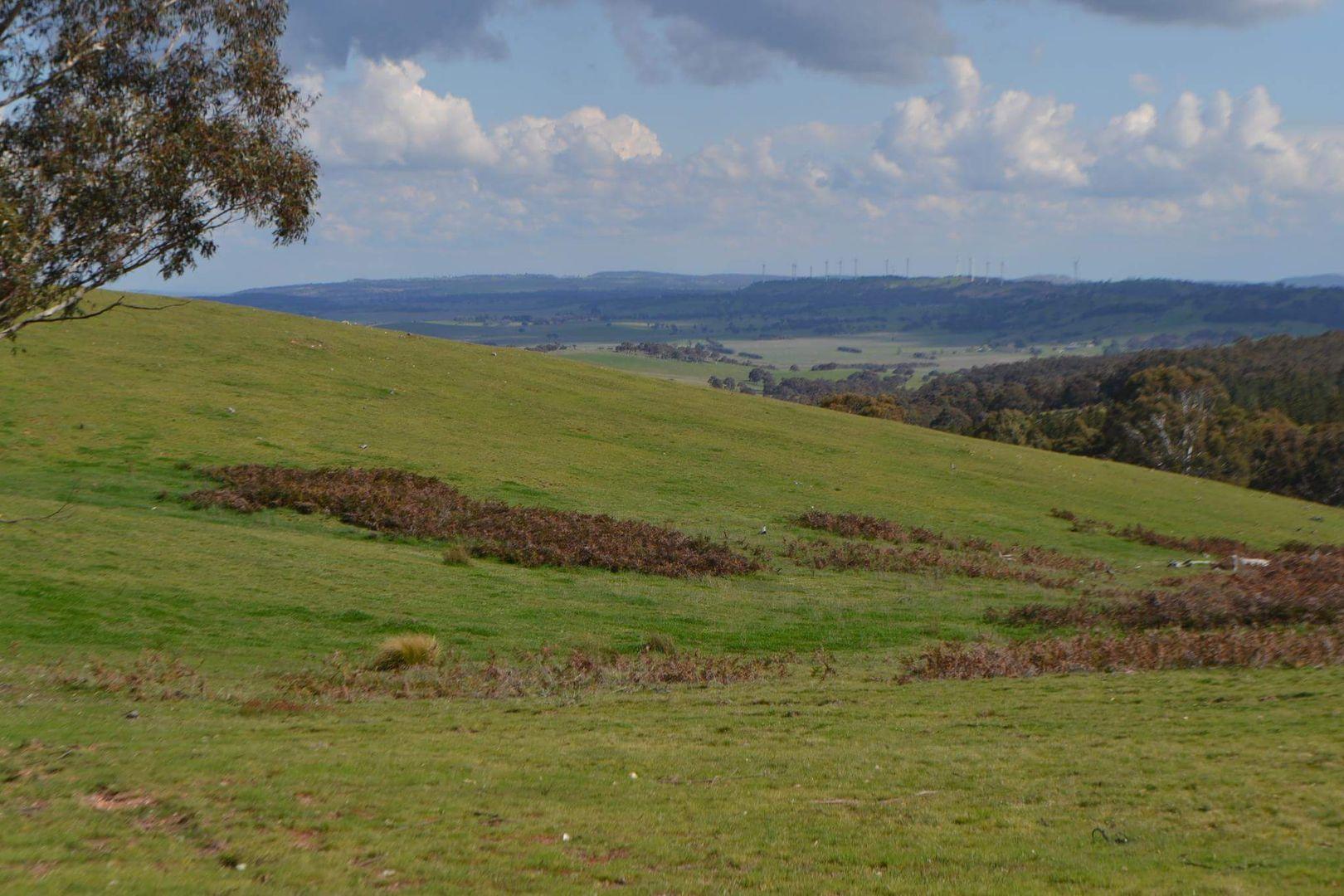 2475 Gurrundah Rd, Gurrundah NSW 2581, Image 0