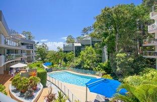 12/24 Little Cove  Road, Noosa Heads QLD 4567