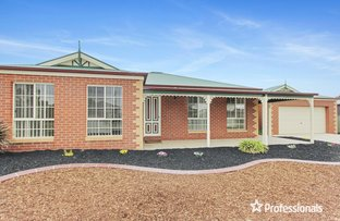 Picture of 4 Lyndam Avenue, Maiden Gully VIC 3551