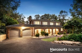 Picture of 17 Pisces Court, Donvale VIC 3111