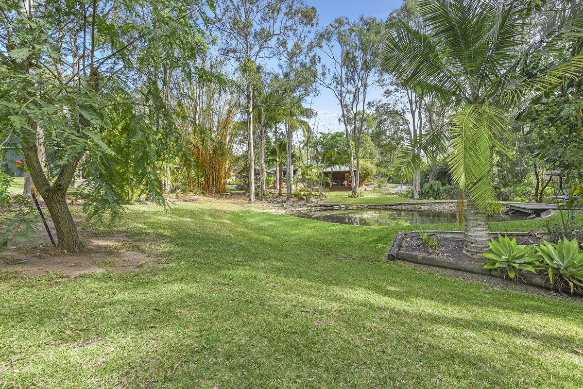 19 Kingsway Drive, Molendinar QLD 4214, Image 1