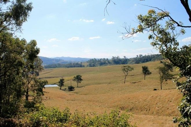 Picture of 554 Afterlee Road - Eden Creek, KYOGLE NSW 2474