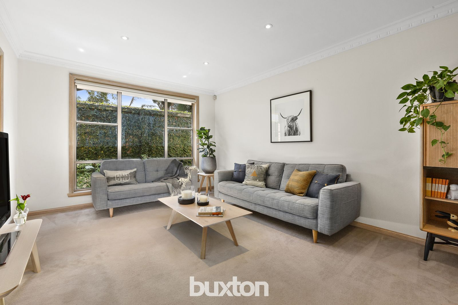 1A Brown Street, Brighton East VIC 3187, Image 1