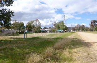 16 Trengove Road, Koorawatha NSW 2807