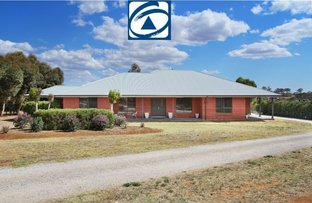 Picture of 8 CASUARINA DRIVE, North Tamworth NSW 2340