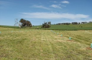 Picture of 379 Thompson Priest Road, Mintaro SA 5415