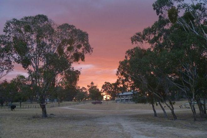 Picture of 641 Balala Road, BALALA NSW 2358