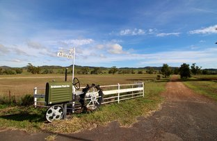 Picture of Arabanoo/1069 Delungra Road, Bingara NSW 2404