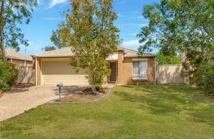 Picture of 8 Holly Court, Raceview QLD 4305