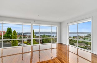 Picture of 14 Hampshire Road, Sandy Bay TAS 7005