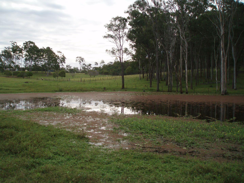 25 Finsens Road, South Kolan QLD 4670, Image 2