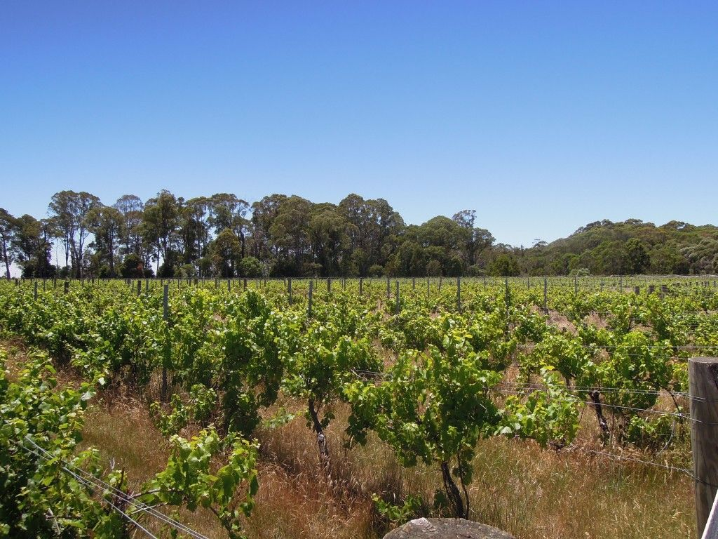 4830 Mansfield Whitfield Road, Whitlands VIC 3678, Image 0
