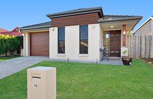 16 Miers Crescent, Murrumba Downs QLD 4503