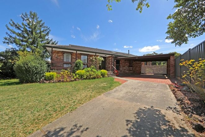 Picture of 13 Carol Street, SCORESBY VIC 3179