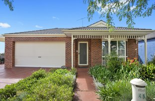 Picture of 49 Paramount Crescent, St Albans Park VIC 3219