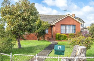 Picture of 37 Neptune Avenue, Newcomb VIC 3219