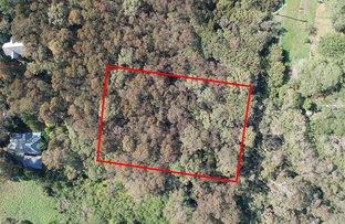 Picture of 17 Kundibar, Blackheath NSW 2785