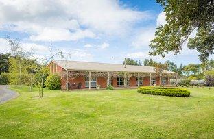 449 Wilton's Road, Allansford VIC 3277